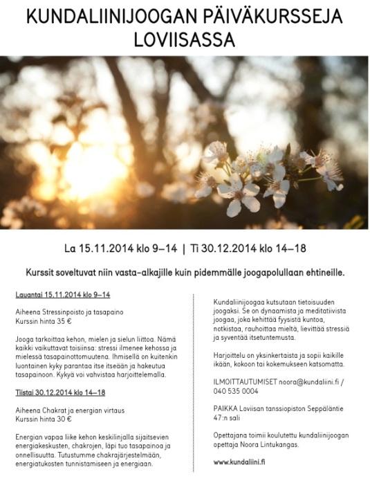 2014_syksy_paivakurssit_loviisassa