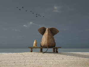 Elephant and dog sit on a deserted beach